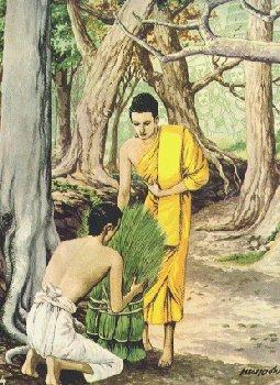 Boddhisatta menerima dana rumput2an dari Brahmana Sotthiya